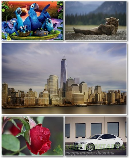 Best HD Wallpapers Pack №1140