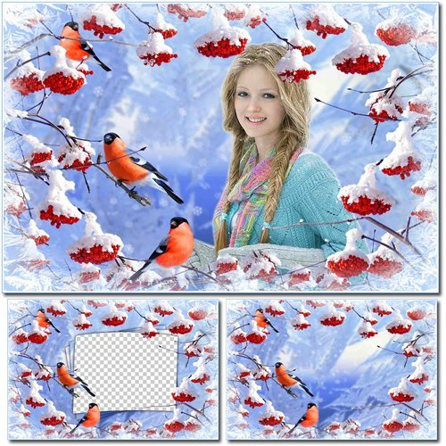 Зимняя рамка для фотошопа – Рябина и снегири