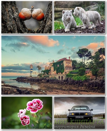 Best HD Wallpapers Pack №1150