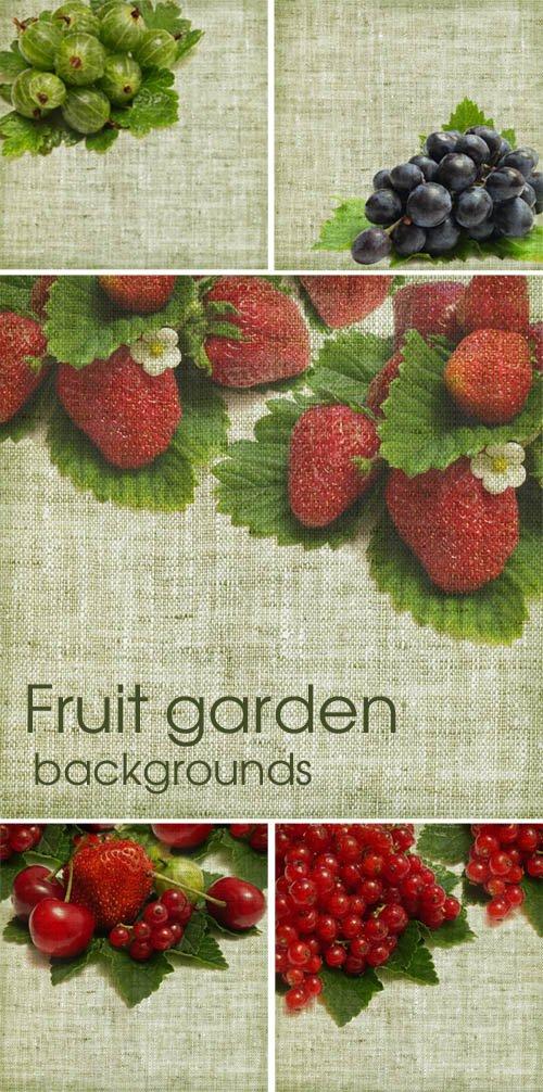 Fruit garden - backgrounds