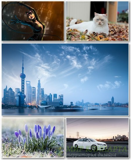 Best HD Wallpapers Pack №1166