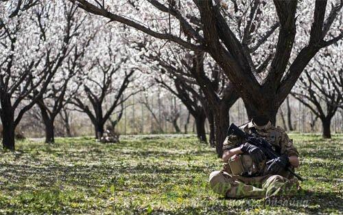 Шаблон мужской - Отдых солдата в весеннем саду