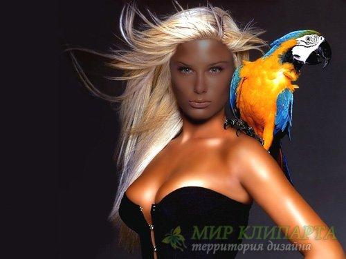 PSD шаблон для девушек - Девушка с ярким попугаем