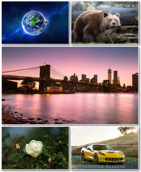 Best HD Wallpapers Pack №1177