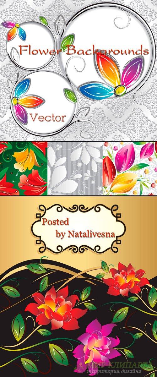 Цветочные  фоны в Векторе с рамками