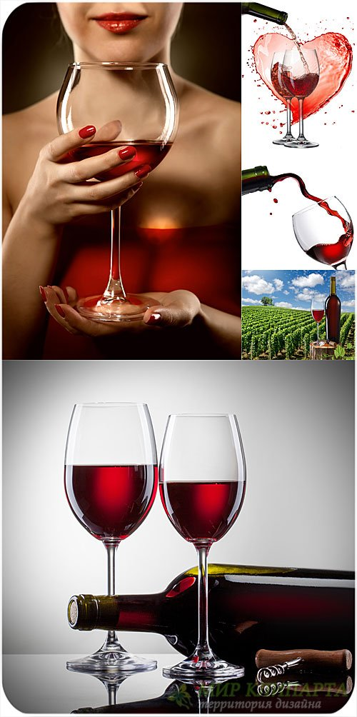 Девушка с бокалом вина - сток фото