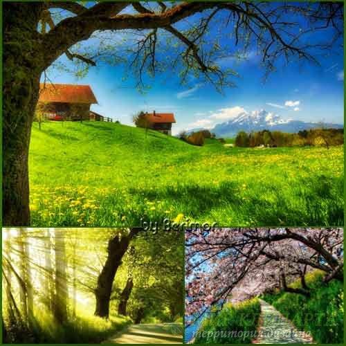 Пятьдесятка  необыкновенно прелестных фото весны