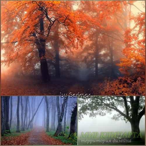 Чрезвычайно мистический туман