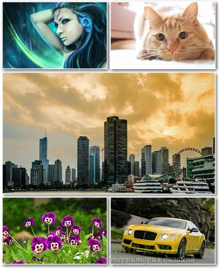 Best HD Wallpapers Pack №1196