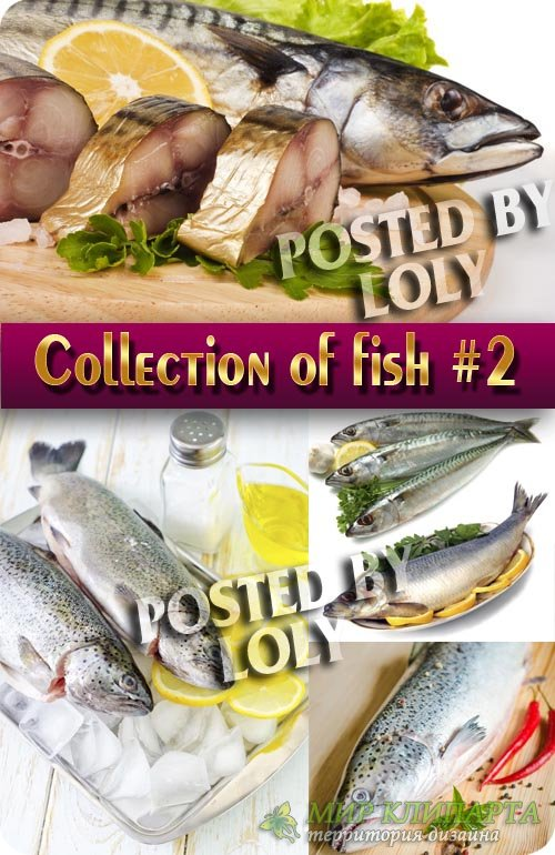 Еда. Мега коллекция. Рыбка #2 - Растровый клипарт
