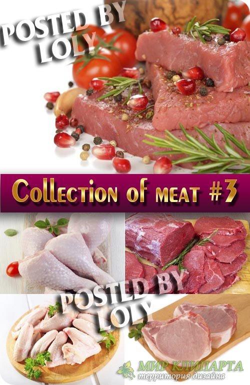 Еда. Мега коллекция. Мясо #3 - Растровый клипарт