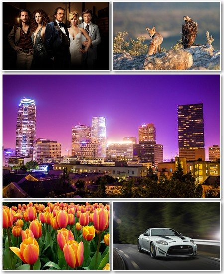 Best HD Wallpapers Pack №1207