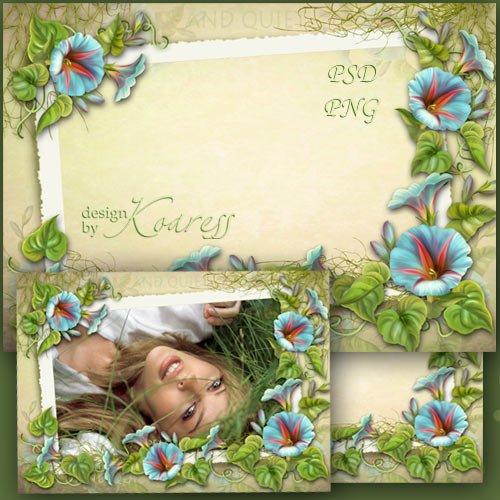 Фоторамка для романтических фотографий с голубыми полевыми цветами - Тишина ...