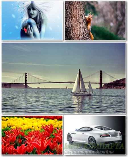 Best HD Wallpapers Pack №1212
