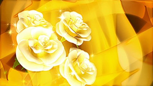 Футаж-видео заставка Розы Судьбы