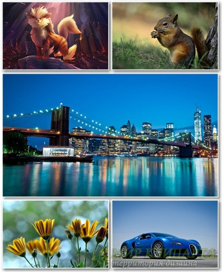 Best HD Wallpapers Pack №1213