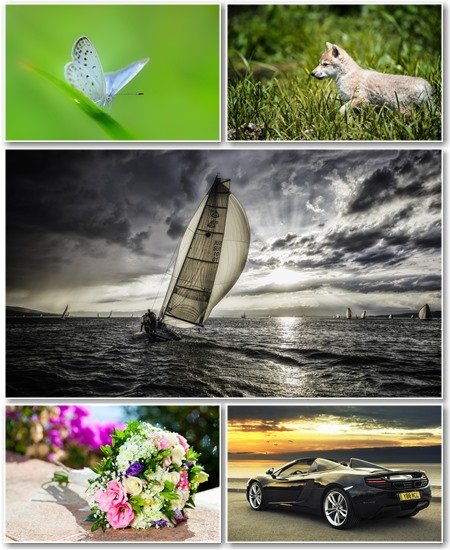 Best HD Wallpapers Pack №1219