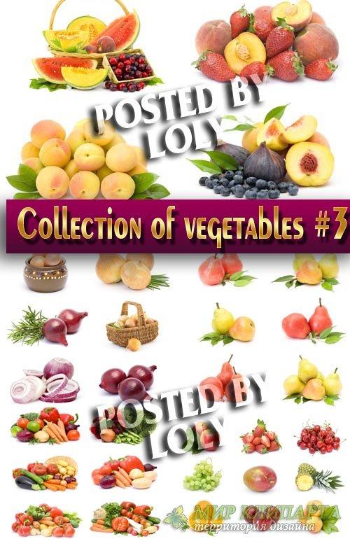 Еда. Мега коллекция. Овощи и Фрукты #3 - Растровый клипарт