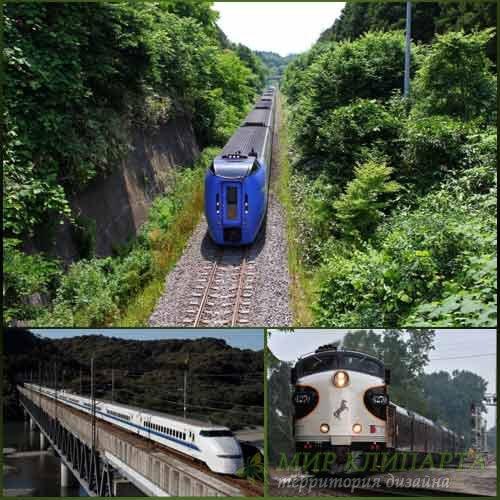 Фото красивых поездов на изумительной природе