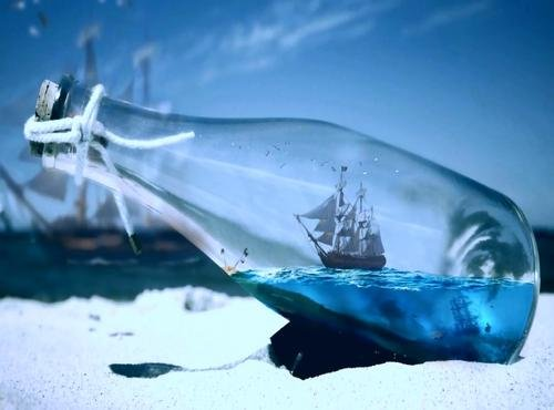 Ship in a Bottle Birds