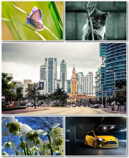 Best HD Wallpapers Pack №1227