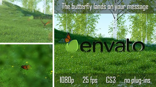 Butterfly Logo Reveal - Project for After Effects (Videohive)