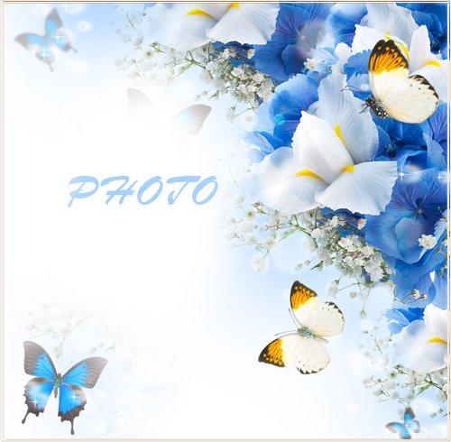 Рамка для фотографии - Весенние бабочки