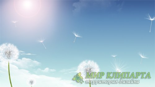Футаж Flying Lightly HD