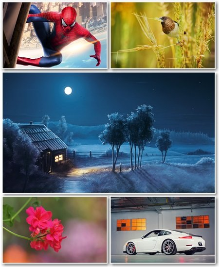 Best HD Wallpapers Pack №1238