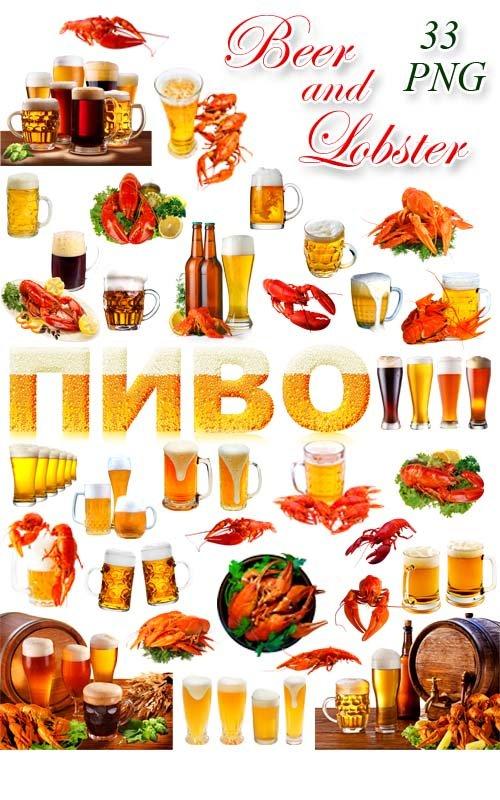 Пиво и Раки - Клипарт на прозрачном фоне / Beer and Lobster