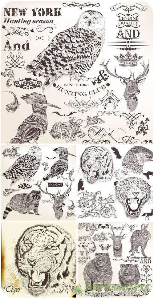 Животные в векторе, декоративные элементы / Animals vector , decorative ele ...