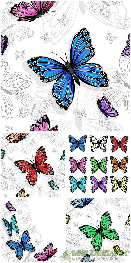 Бабочки в векторе / Butterfly vector