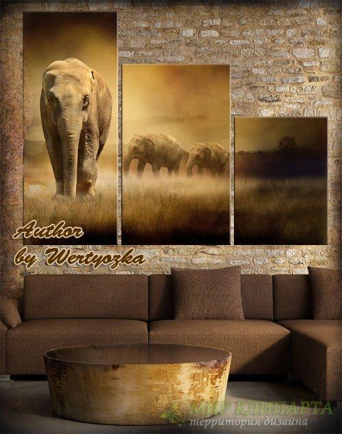 Модульная картина в псд - Слоны в винтажном стиле