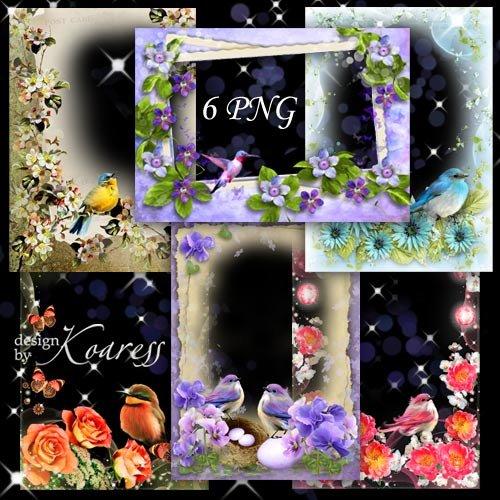 Набор png рамок для фото с птичками - Птичье пение в день весенний