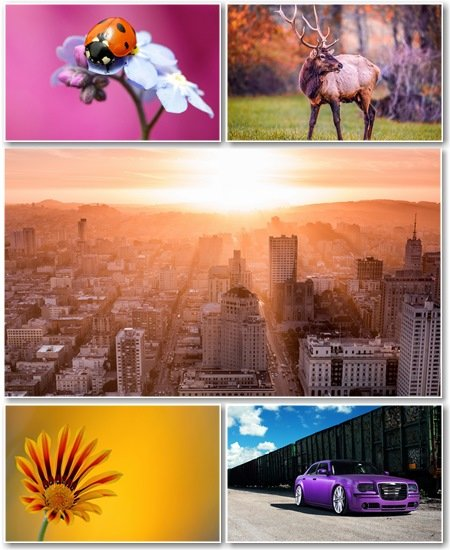 Best HD Wallpapers Pack №1261
