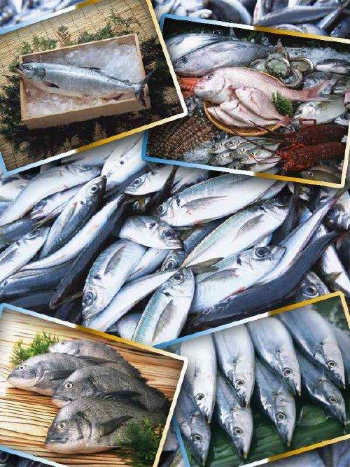 Фотосток: Морепродукты (часть вторая)