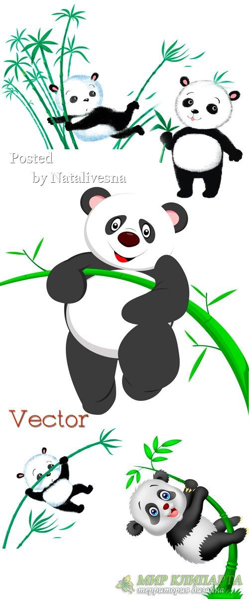 Панда с бамбуковой веткой  в  Векторе