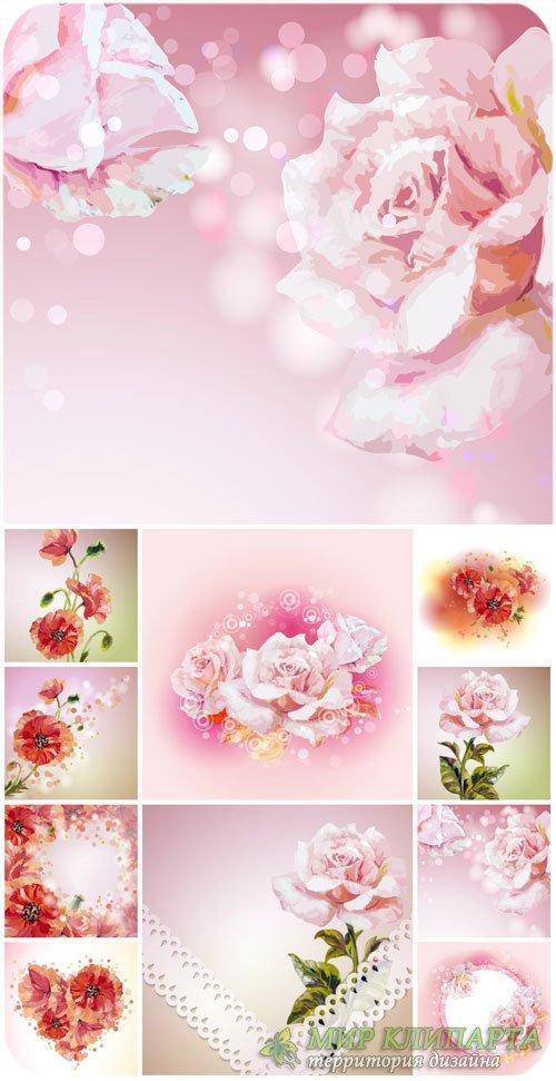 Розы, красные маки, векторные фоны / Roses, red poppies, vector backgrounds