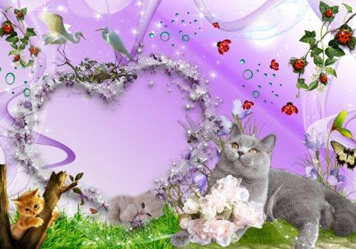 Детские рамки - С котятами