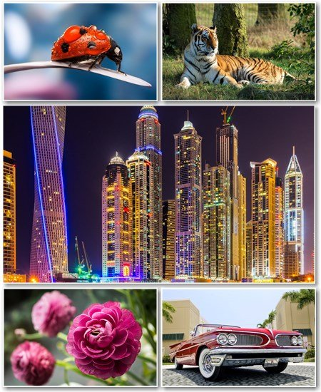 Best HD Wallpapers Pack №1266