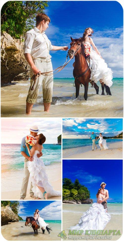 Жених и невеста на берегу моря / Bride and groom on the beach - Stock Photo