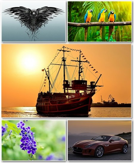 Best HD Wallpapers Pack №1268