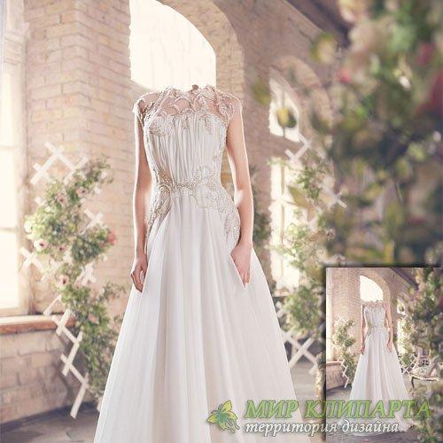 Шаблон для фотошопа - Фотосессия в красивом платье