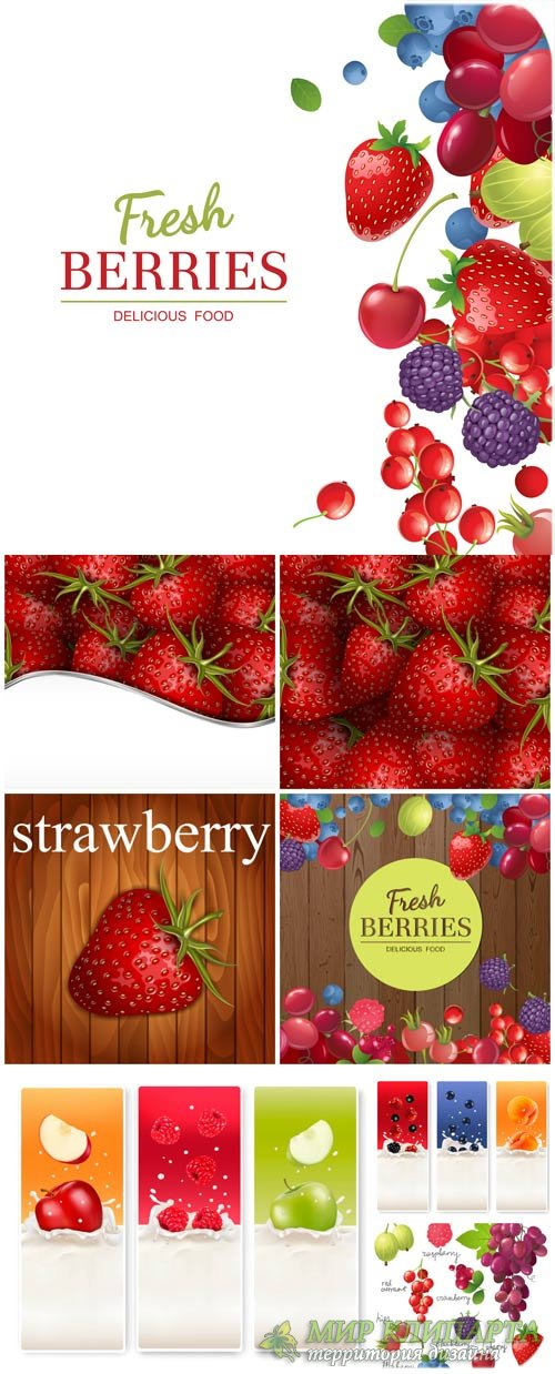 Фрукты, векторные фоны и баннеры с фруктами и ягодами / Fruits, vector back ...