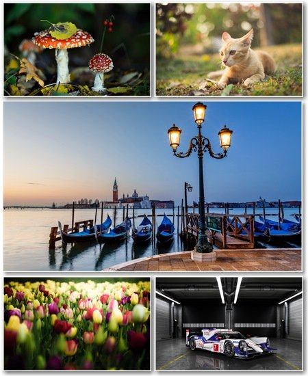 Best HD Wallpapers Pack №1271