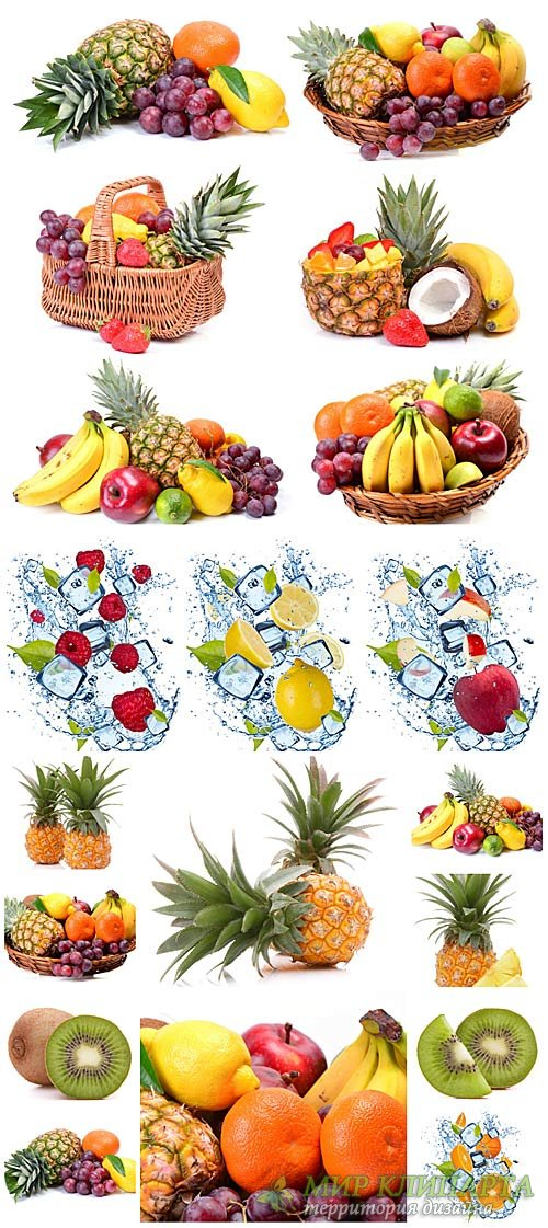 Фрукты и ягоды, экзотические фрукты / Fruits and berries, exotic fruits - S ...