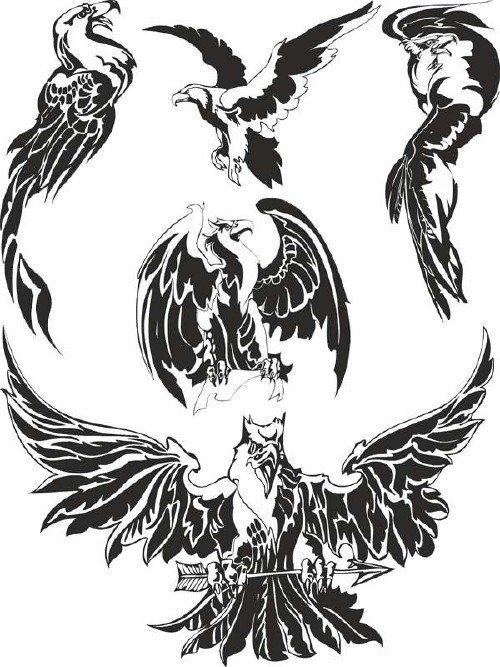 Орлы (хищные птицы) подборка вектора
