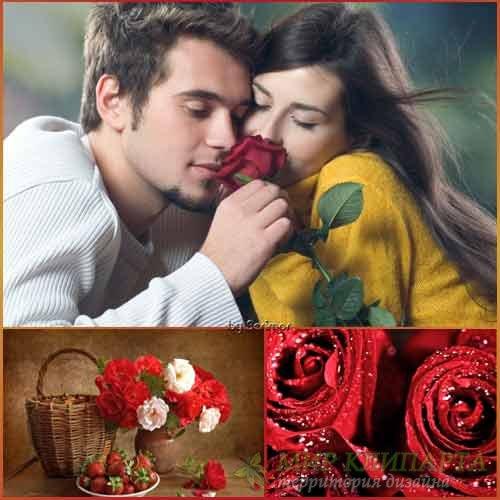 Розы необыкновенные и превосходные фото