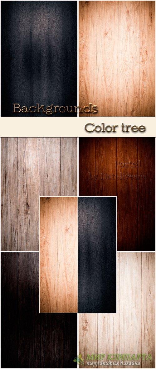 Фоны для дизайна – Дерево в разном цвете