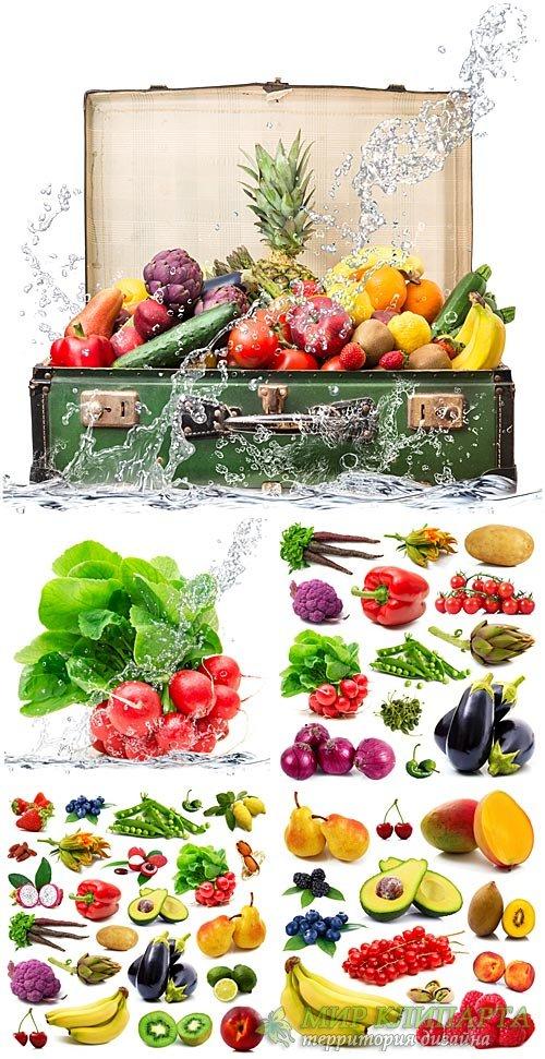 Фрукты, овощи, экзотические фрукты / Fruits, vegetables, exotic fruits - St ...